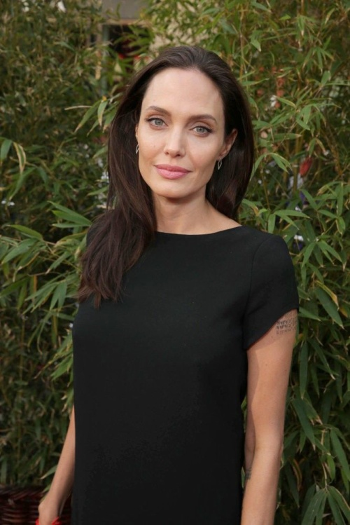 Angelina Jolie seen at DreamWorks Animation and Twentieth Century Fox World Premiere of 'Kung Fu Panda 3' at TCL Chinese Theater on Saturday, Jan. 16, 2016, in Hollywood, CA. (Photo by Eric Charbonneau/Invision for Twentieth Century Fox/AP Images)