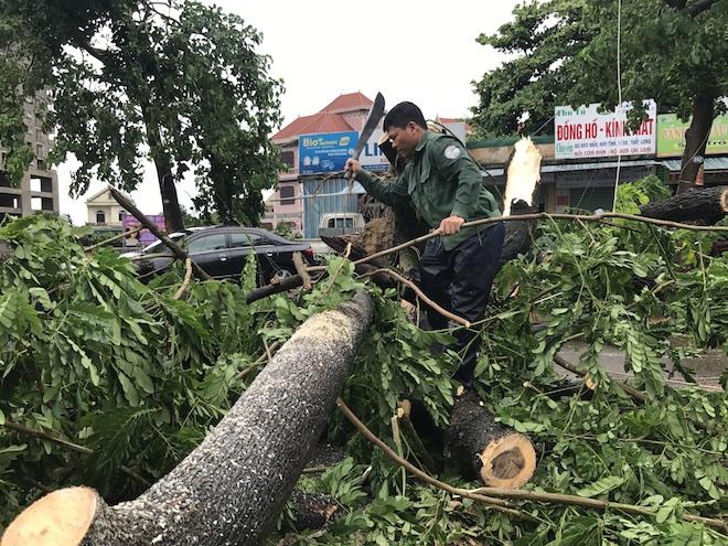 Cây lớn đổ đè chắn đường Lê Lợi khiến giao thông ách tắc.