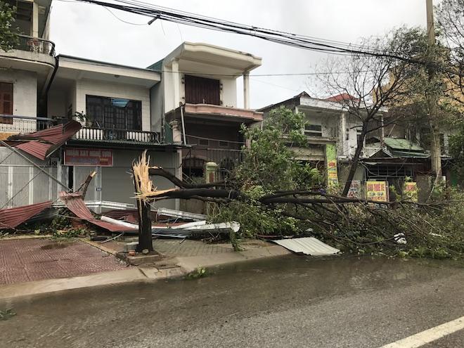 Cây gãy ngang đổ đè lên nhiều nhà dân tại đường Nguyễn Sỹ Sách (TP Vinh, Nghệ An).