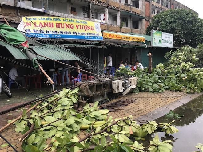 Một cột điện bằng bê tông đổ sập cuốn theo nhiều dây điện và cây xanh tại đường Phan Chu Trinh.