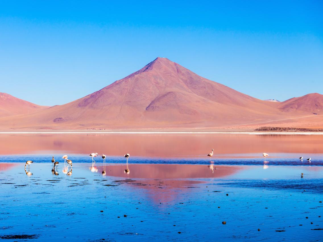 """<strong><em>Dãy Andes, Bolivia:</em></strong>Với chiều dài hơn 7.200 km, Andes là dãy núi trong lục địa dài nhất trên thế giới. Nằm trên cao nguyên Altiplano của Bolivia, phía trước dãy Andes hùng vĩ là <em>Laguna Colorado,</em>hồ nước thường được gọi là """"đầm đỏ"""". Vùng nước mặn này thu hút nhiều chim hồng hạc Andean - loài chim hồng hạc hiếm nhất trên thế giới. Hồ nước có màu đỏ chủ yếu là do tảo và trầm tích màu đỏ có ở trong nước."""