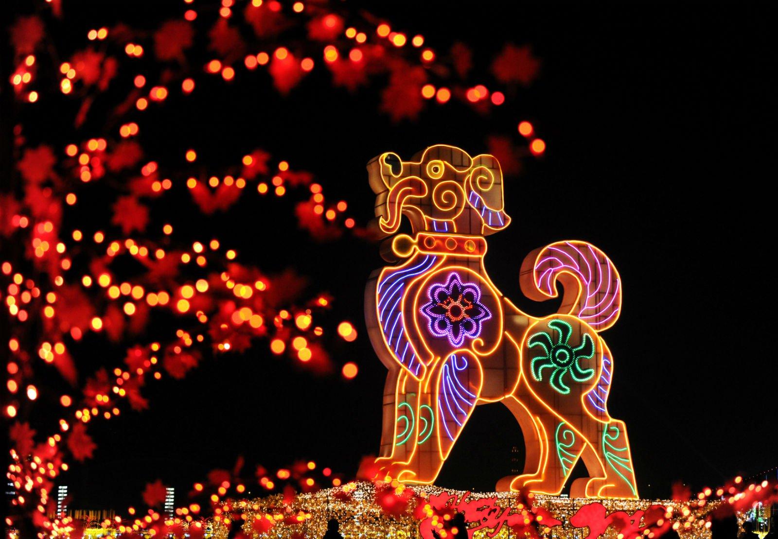 Mô hình chú chó khổng lồ được trang trí rực rỡ ở quảng trường Tinh Hải, thành phố Đại Liên, tỉnh Liêu Ninh, Trung Quốc. Theo cách tính của người Trung Quốc, năm 2018 sẽ là năm con chó.
