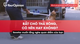 chi-cuc-thu-y-tp-hcm,cho-tha-rong,ro-mom-cho,your-opinion,youropinion