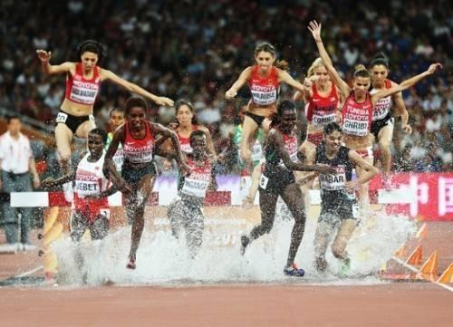 Một pha nhảy nước đẹp mắt của các vận động viên nữ