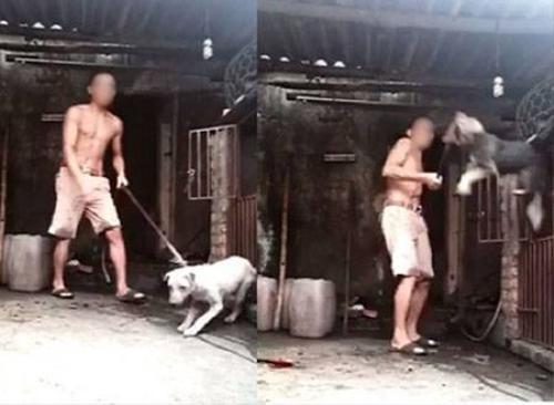 Nam thanh niên liên tục dùng gậy đánh đập sau đó giết 3 con chó rồi hứng máu vào chiếc nồi để uống - (Ảnh cắt từ clip).