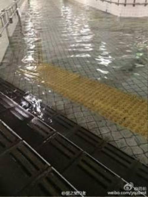 Nước lũ trong xanh như hồ bơi tại Nhật Bản khiến nhiều người kinh ngạc.