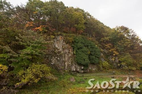 Vách núi trên đường vào chùa với hàng cây đang dần ngả sang sắc vàng và đỏ