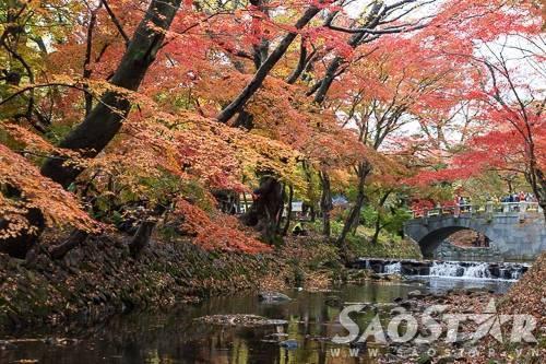 chua-seonunsa-han-quoc-mua-thu-_MG_8072