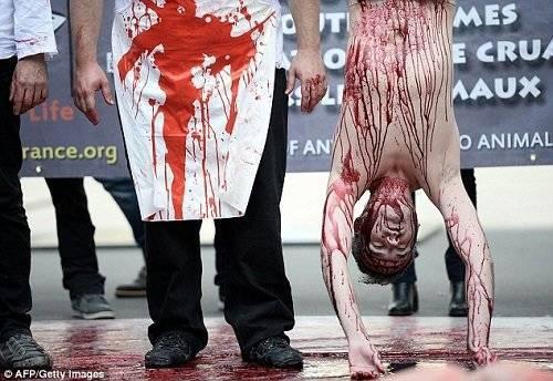 Cuộc biểu tình được tổ chức bởi nhóm chiến dịch 269 Life, như là một phần của Ngày ăn chay Quốc tế, vốn là một sự kiện thường niên kể từ năm 2009.