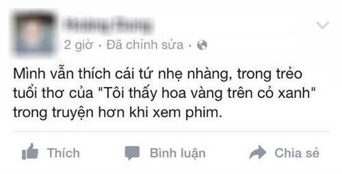 phan-hoi-hoa-vang-co-xanh-11