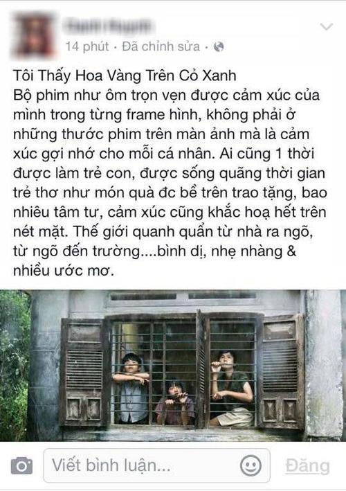 phan-hoi-hoa-vang-co-xanh-13