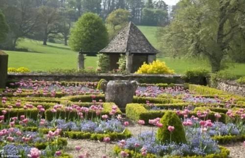 Trong sân vườn trồng rất nhiều hoa.