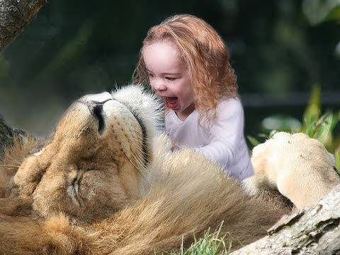 lion-rescues-girl