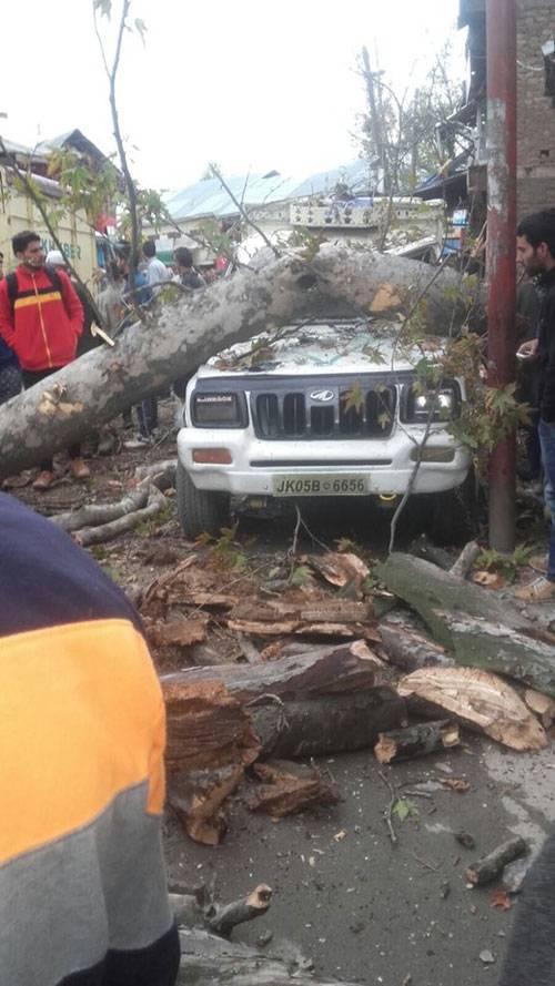 ây đổ lên xe ô tô do động đất gây ra ở vùng Kashmir, Ấn Độ. Ảnh: Twitter.