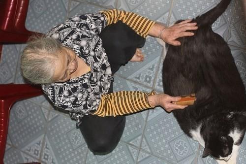 Bà Nga và chú mèo khủng.