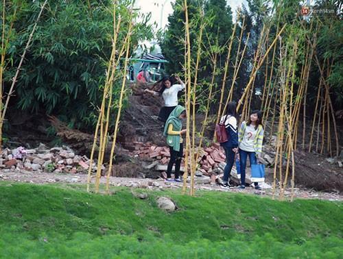 Không thể kiểm soát được tình hình, 16h chiều 29/11 chủ vườn đã tạm đóng cửa để có thể khắc phục lại những gì còn sót lại tại đây nhưng nhiều bạn trẻ vẫn tìm cách trèo rào để có thể vào vườn.