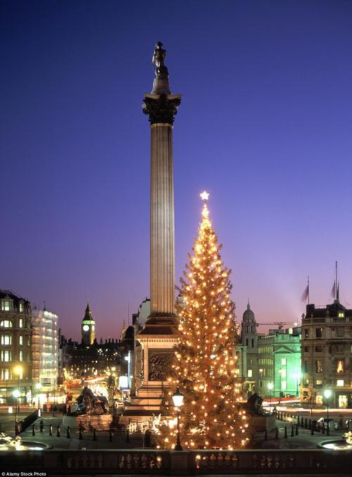 Quảng trường Trafalgar, London, được thắp sáng bởi món quà Giáng sinh từ Na-uy là cây thông lung linh này.