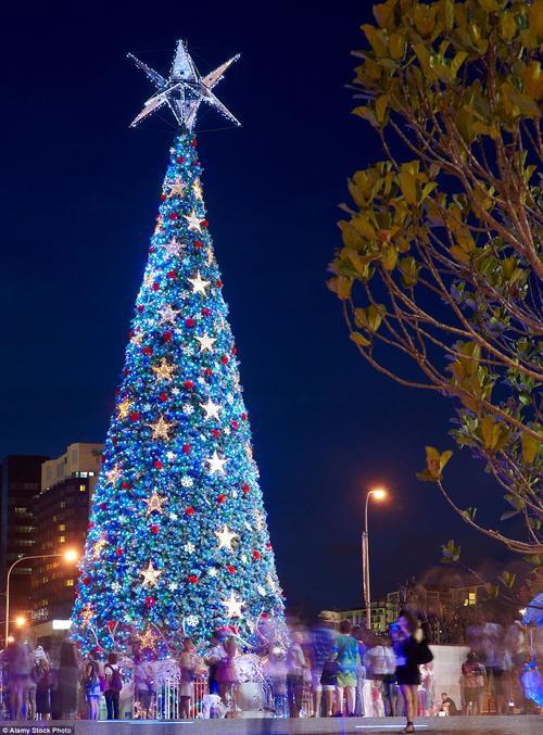Cây thông thắp sáng bằng năng lượng mặt trời lớn nhất thế giới tại quảng trường Vua George, trung tâm thành phố Brisbane, Úc là một điểm đến Giáng sinh hấp dẫn cho cả khach du lịch và người dân địa phương.