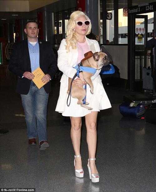 Nữ ca sĩ mang theo cún cưng đến sân bay hôm 24/12.