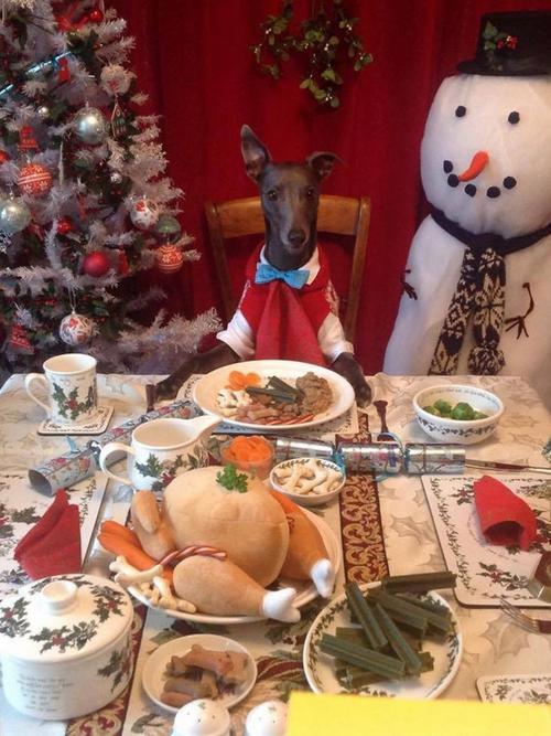 Sẵn sàng trên bàn tiệc giáng sinh
