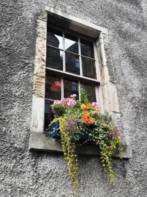 Ô cửa sổ kiểu đặc trưng của Edinburgh.