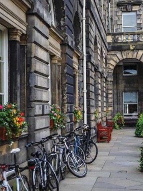 Những con hẻm đá xám được trang trí bằng xe đạp và hoa tươi đủ sắc màu.