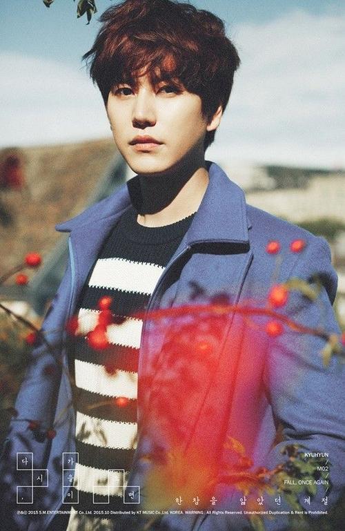 7. Kyuhyun - Fall, Once Again (45.073 bản).