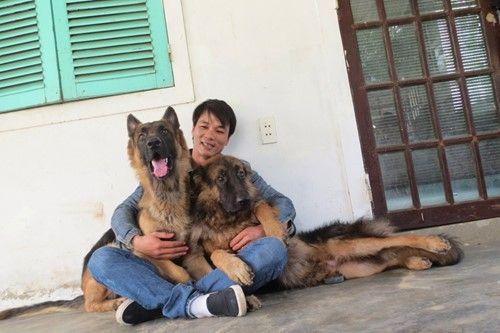 Hai chú chó thân thiết với Sơn