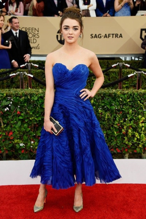 damcupngucsagawards (11)