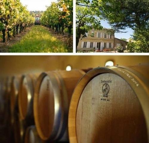 Khu rượu vang của Én nhỏ tại Pháp.