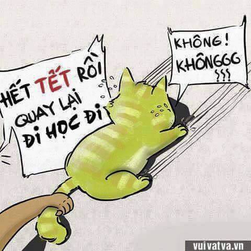 HetTet (1)