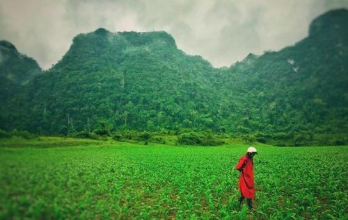 vietnamdep06
