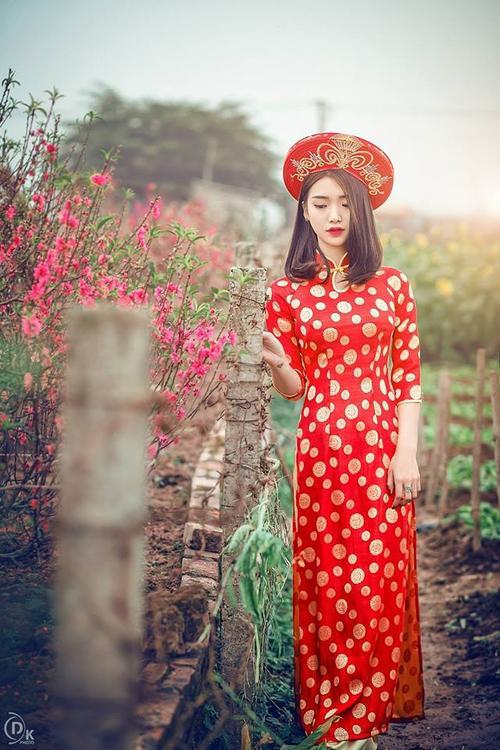 NguyenLyHaiAnh0 (5)