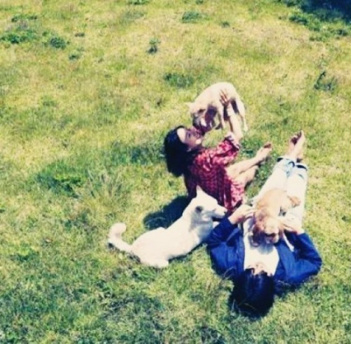 Hyori cùng chồng trải qua những tháng ngày hạnh phúc viên mãn, giản đơn bên đàn cún dưới một mái nhà.