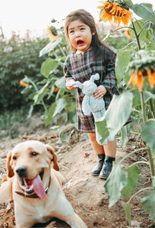 Biểu cảm sợ chó vô cùng đáng yêu của 2 cô bé 'gây sốt' cộng đồng mạng - ảnh 5