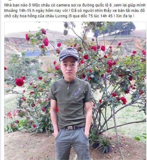Bị chửi rủa là kẻ ăn cắp cây hoa hồng cổ 10 năm chỉ vì đăng ảnh lên trang cá nhân, chàng trai lên tiếng kêu oan