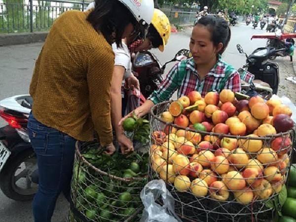 Song, tại thị trường, các loại cam đều được biến thành cam Hưng Yên, Hà Giang để lừa người tiêu dùng.
