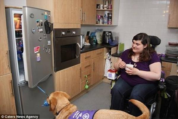 Mọi việc trong nhà là do chú chó này hỗ trợ cô chủ