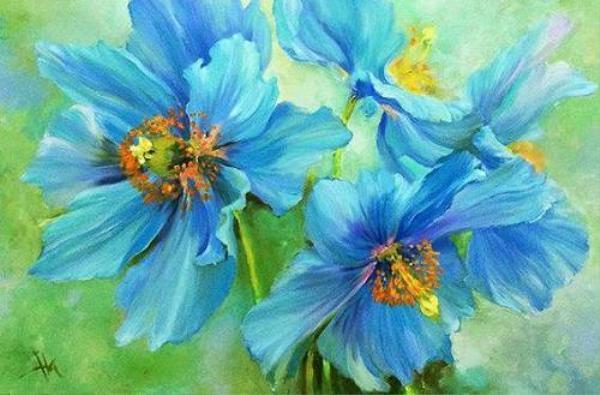 Ha - Blue Poppy 7 - Thanh xu ly
