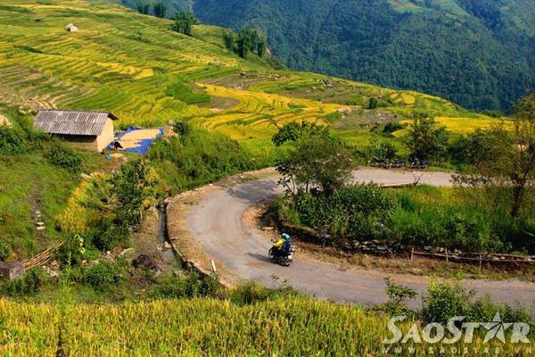 Tiếp tục từ Sàng Ma Sáo, chạy xe qua Dền Sáng bạn sẽ ghé thăm vùng đất trên trời Y Tý, nơi được mệnh danh là thiên đường lúa - mây của Việt Nam. Đây là xã vùng cao giáp biên với Trung Quốc nằm trên độ cao 2000m so với mực nước biển, với những thung lũng lúa đẹp nhất tỉnh Lào Cai.