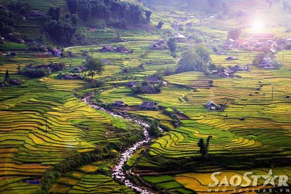  Trong bảng xếp hạng 30 thắng cảnh đẹp nhất thế giới, ruộng bậc thang Sapa chiếm một vị trí rất trang trọng và là niềm tự hào của du lịch Việt Nam. Dọc theo thung lũng suối Mường Hoa là các bản Tả Van, Lao Chải, đây cũng là nơi tập trung những cánh đồng lúa lớn nhất, đẹp nhất và cao nhất.