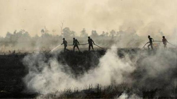 Lực lượng cứu hộ ra sức dập đám cháy ở Ogan Ilir, Nam Sumatra