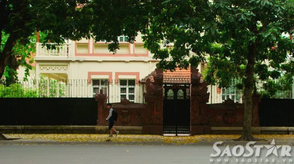 Đường đi học trải thảm lá vàng trên phố Ngô Quyền...
