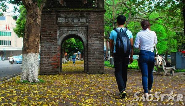 Người Hà Nội lại rộn rã xuống phố những ngày mùa vàng - trút lá để có thể cảm nhận thời khắc có thể nói là đẹp nhất trong năm này.