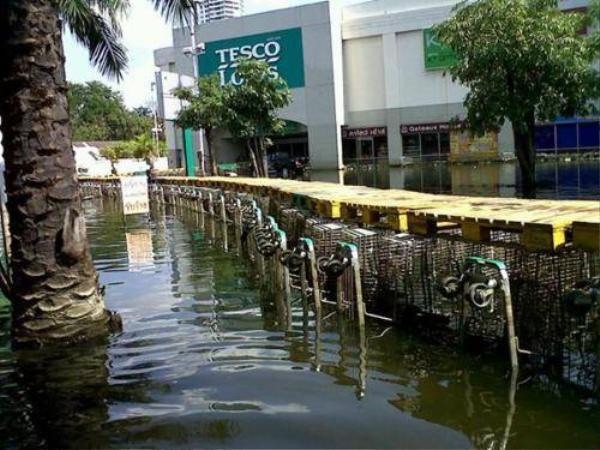 Xe đẩy mua hàng được ghép thành một cây cầu để nối vào cổng siêu thị.