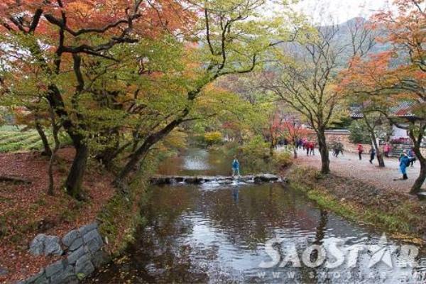 Con suối dài hàng cây số dẫn du khách đi sâu vào ngôi chùa trong núi