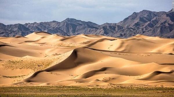 Khác với sa mạc Sahara, Gobi chỉ có khoảng 3% là đụn cát, phần còn lại được đá, đồng cỏ khô và sỏi bao phủ. Với khí hậu vô cùng khắc nghiệt song số lượng động vật lại vô cùng phong phú với lạc đà 2 bướu, dê rừng, sói và đại bang vàng.