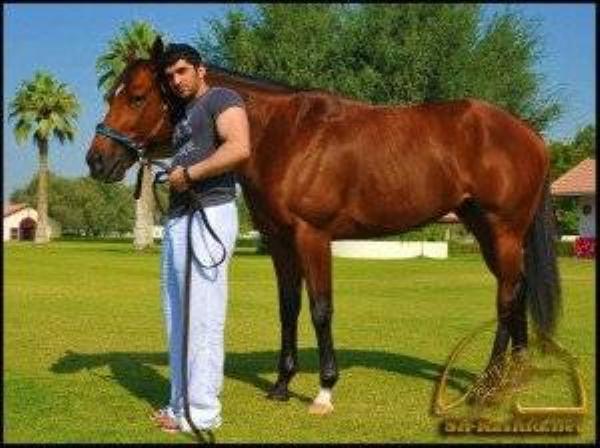 Hoàng tử Rashid vô cùng mê các môn thể thao như: bóng đá, cưỡi ngựa.