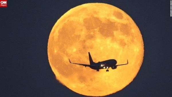 Siêu trăng tại Los Angeles, Mỹ