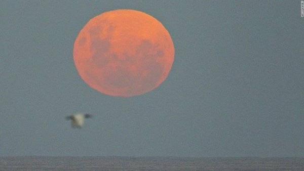 Siêu trăng được ghi nhận tại Thái Bình Dương tại Sydney, Úc